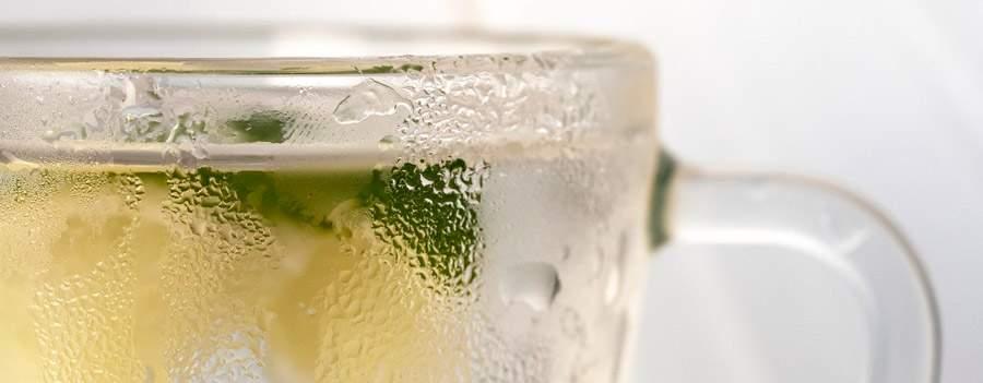bebida refrescante de alcachofa